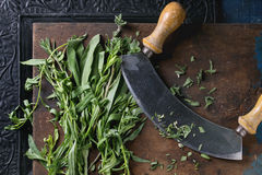 Bundle of fresh Italian herbs Stock Photo