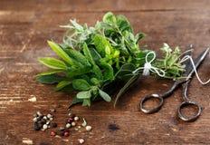Bundle of fresh Kitchen Herbs Stock Image
