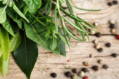 Bundle of fresh Kitchen Herbs Royalty Free Stock Photo
