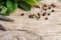 Bundle of fresh Kitchen Herbs Royalty Free Stock Image