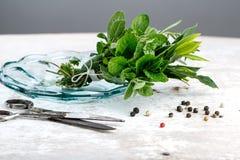 Bundle of fresh Kitchen Herbs Stock Photography