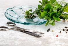 Bundle of fresh Kitchen Herbs Stock Photos
