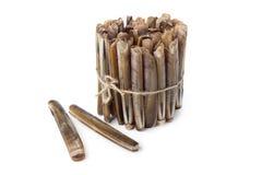 Bundle of fresh raw razor shells Stock Photography