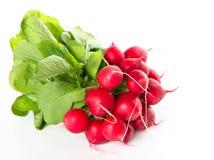 Bundle of garden radish isolated on white Royalty Free Stock Photography