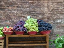 Bundle of Grapes. Bundles of grapes in Sienna, Italy Royalty Free Stock Image