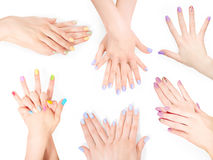 Bundle of hands with shellac art manicure royalty free stock photo