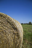 Bundle of hay Royalty Free Stock Photography