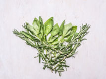 Bundle of herbs, basil and rosemary on wooden rustic background top view close up Stock Images