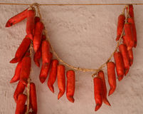 Bundle of hot red pepper Stock Images