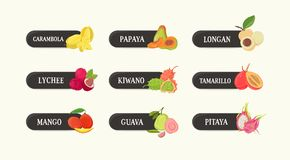 Bundle of labels with delicious sweet fresh juicy exotic tropical fruits and their names. Set of tags with tasty raw. Vegetarian dessert food isolated on white Royalty Free Stock Photography