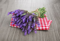 Bundle of lavender Royalty Free Stock Image