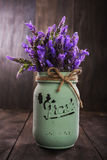 Bundle of lavender flowers Royalty Free Stock Image