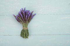 Bundle of lavender Royalty Free Stock Photography