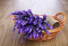 Bundle of lavender Royalty Free Stock Photos