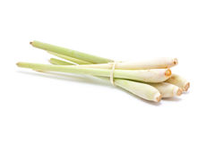 Bundle of lemongrass. Stock Image