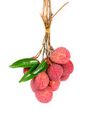 Bundle Lychee or Litchi  Royalty Free Stock Images