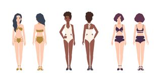 Bundle of multiracial women wearing swimwear. Set of pretty girls dressed in bikini and swimsuits. Female cartoon. Characters isolated on white background Stock Image