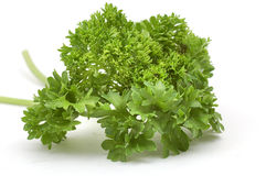 Bundle of parsley. On the white Stock Photo