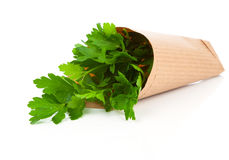 Bundle of parsley Royalty Free Stock Photography