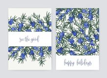 Bundle of postcard templates with juniper berries and leaves on white background and holiday wish. Set of cards. Decorated by beautiful coniferous plant stock illustration