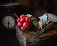 Bundle of radishes on a wooden box, a knife, scales on a dark background Stock Photography