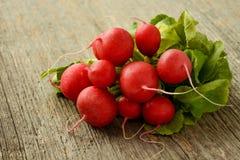 Bundle of radishes Royalty Free Stock Images