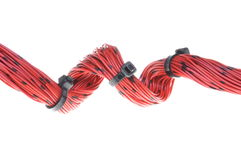 Bundle of red cables Stock Image