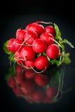 Bundle of red radish Royalty Free Stock Photography