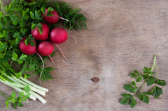 Bundle of red radish  on a wooden background Royalty Free Stock Image