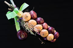 Bundle of red and yellow onion Royalty Free Stock Photo