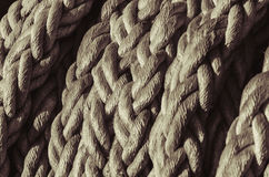 A solid navigation rope. A bundle of the solid navigation rope Royalty Free Stock Image