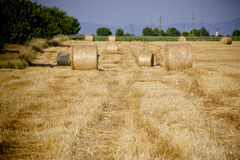 Bundle of straw Royalty Free Stock Photo