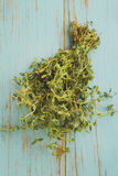Bundle of thyme Stock Images