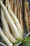 Bundle of turnip and burdock root on display at the grocery stor. E shelf in the Liberdade district in Sao Paulo, Brazil Stock Photo