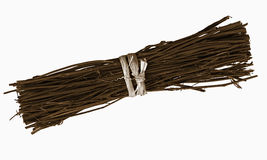Bundle of twigs, isolated over white Stock Photography