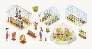 Bundle of various glass greenhouses with plants, flowers and vegetables growing inside, gardeners, farmers or vector illustration