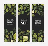 Bundle of vertical banner templates with fresh tasty salad leaves and spice herbs on black background. Vector royalty free illustration
