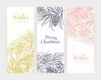 Bundle of vertical seasonal banners or backdrops with pine tree branches and cones hand drawn with contour lines and stock illustration