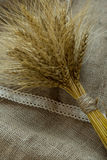 Bundle of wheat. On a burlap sack. Rustic concept Stock Photography