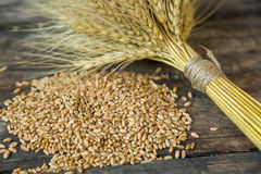 Bundle of wheat and wheat beans. On a old wooden background Royalty Free Stock Photo