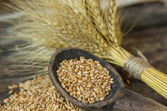 Bundle of wheat and wheat beans. On a old wooden background Stock Photo