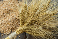 Bundle of wheat and wheat beans. On a old wooden background Royalty Free Stock Photography