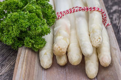 Bundle of white asparagus  with parsley Royalty Free Stock Photos