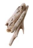 Bundle of drift wood sticks. Bundle of worm hole riddled sun bleached drift wood isolated on white background Royalty Free Stock Image