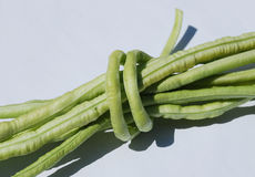 Bundle of Yardlong Beans Stock Photography
