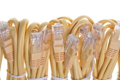 Bundle yellow network cables Stock Images