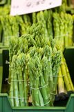 Bundled asparagus at market stand Royalty Free Stock Images