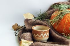 picture with a big pumpkin, a clay cup and branches of a Christmas tree on a light background. royalty free stock photo