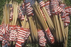 Bundles of American Flags Stock Photo
