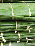Bundles of banana leaves Stock Photography